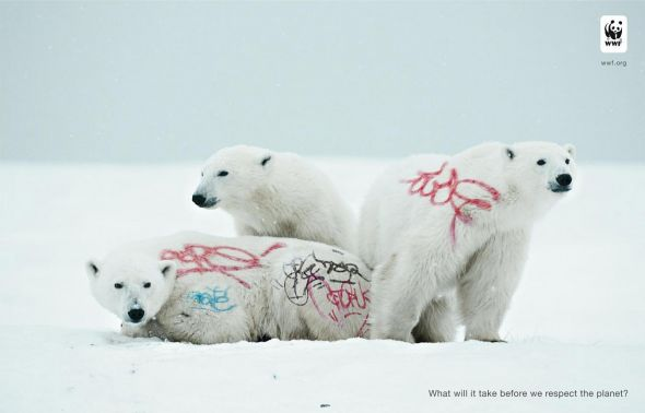 Biodiversity-and-biosafety-awareness-white-bear.preview