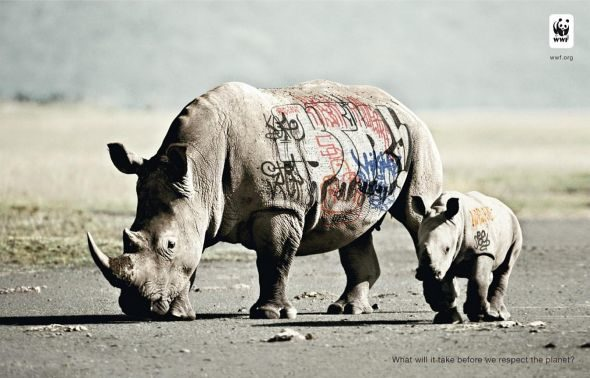 Biodiversity-and-biosafety-awareness-rhinoceros.preview