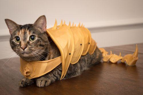 Print-that-thing-fabriquez-vous-meme-une-armure-en-impression-3d-pour-votre-chat-une