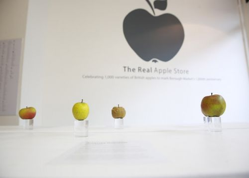 Real-apple-store-05-2014-1