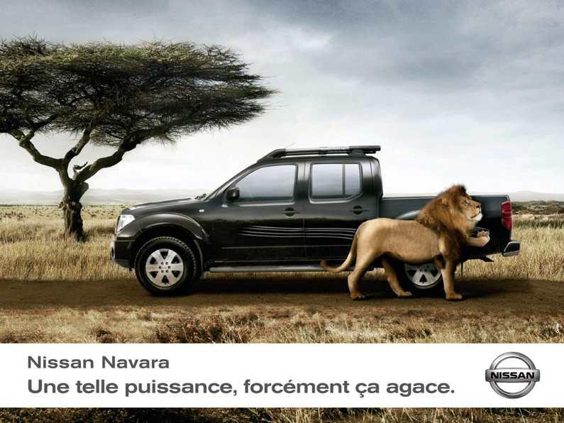 Nissan_navara_lion